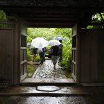 ローカルファーストproject第3弾「すべて茅ヶ崎産!日本酒をお米から作る会」の田植え&トークセッション「森と組織作り」開催